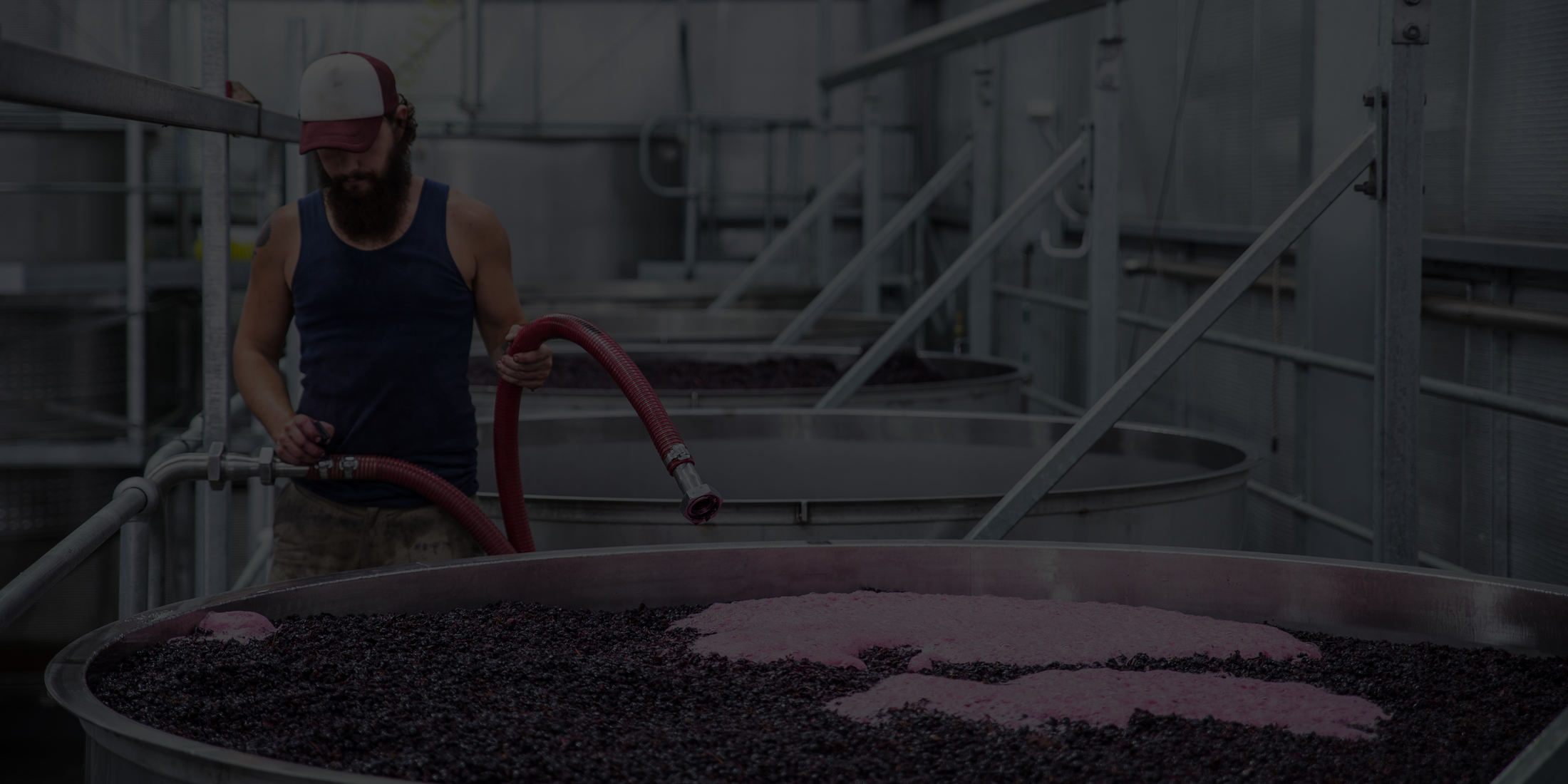 The Art of Winemaking is as Old as Time Itself
